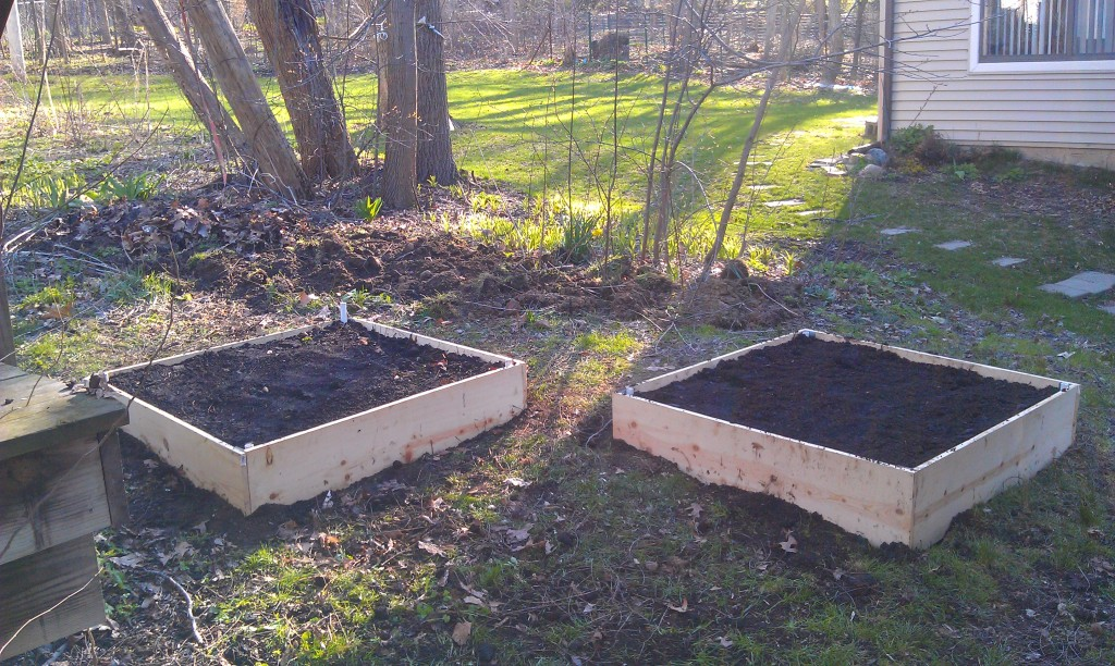 The finished product, two 4'x4' raised beds.